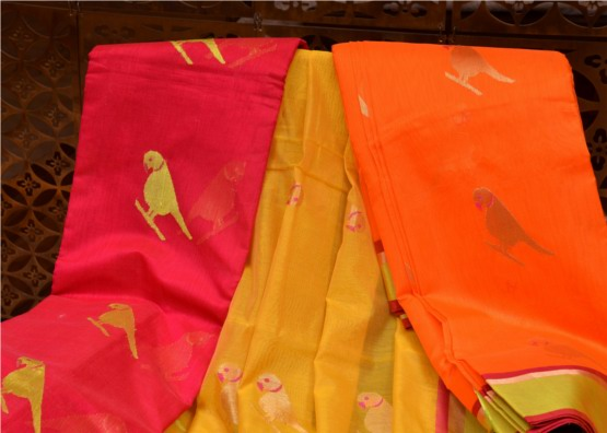 Saree Cotton Chanderi by Raisons